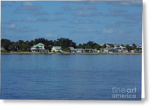 Cedar Key Greeting Cards - Cedar Key From The Gulf Greeting Card by D Hackett