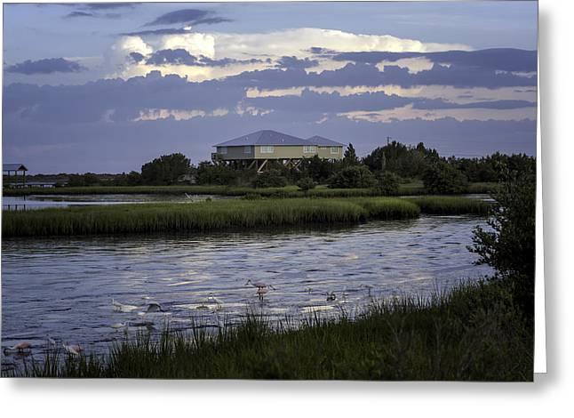 Cedar Key Greeting Cards - Cedar Key Wetlands at Low Tide Greeting Card by Lynn Palmer