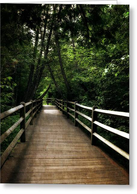 Cedar Fence Greeting Cards - Cedar Pathway 2.0 Greeting Card by Michelle Calkins