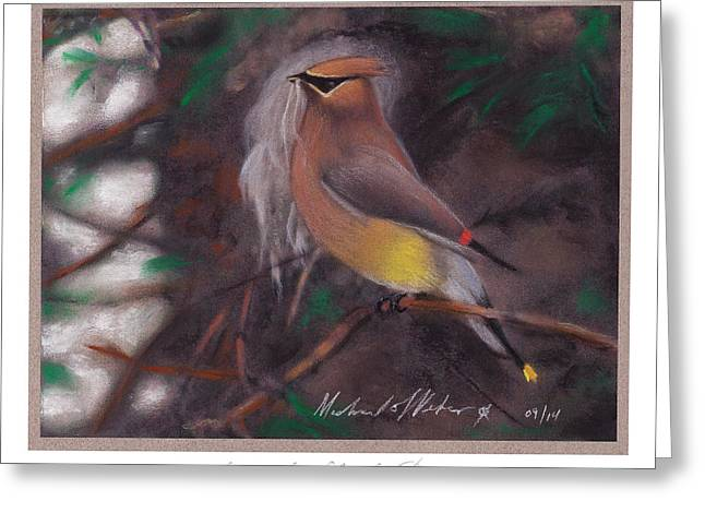 Gathering Pastels Greeting Cards - Cedar Waxwing Greeting Card by Michael  Weber