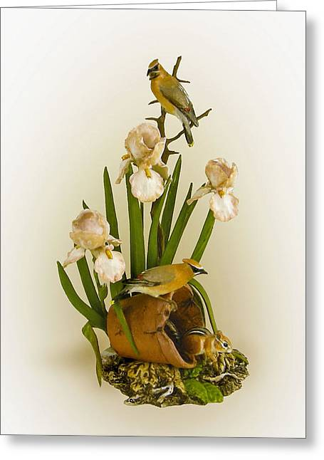 Cedar Sculptures Greeting Cards - Cedar Waxwings and Iris Greeting Card by Mary Mcgrath