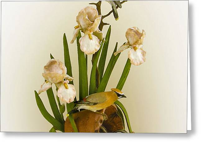 Cedar Waxwings and Iris Greeting Card by Mary Mcgrath