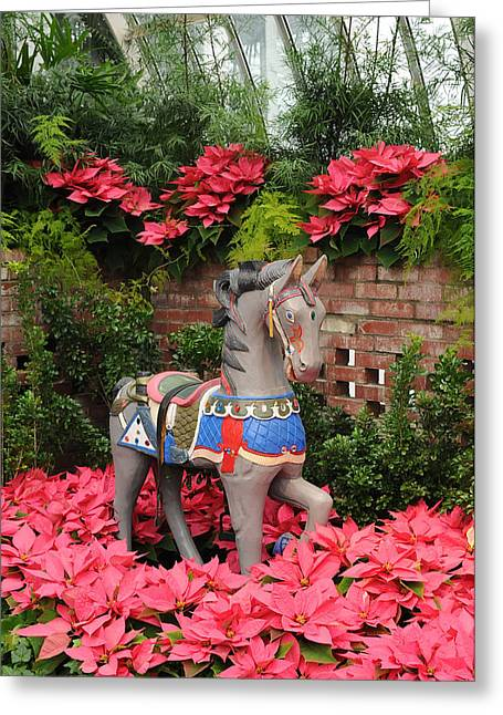 Phipps Conservatory Greeting Cards - Celebrating Christmas Greeting Card by Cyril Furlan
