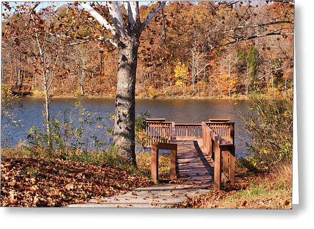 Indiana Autumn Greeting Cards - Celina Lake Path Greeting Card by Sandy Keeton