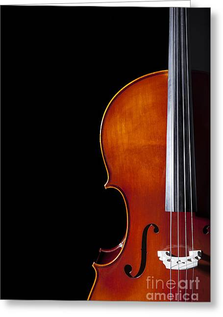 Isolated On Black Greeting Cards - Cello Greeting Card by Diane Diederich
