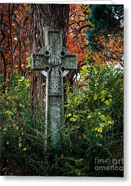 Historical Cemetery Greeting Cards - Celtic Cross in Foliage Greeting Card by Sonja Quintero