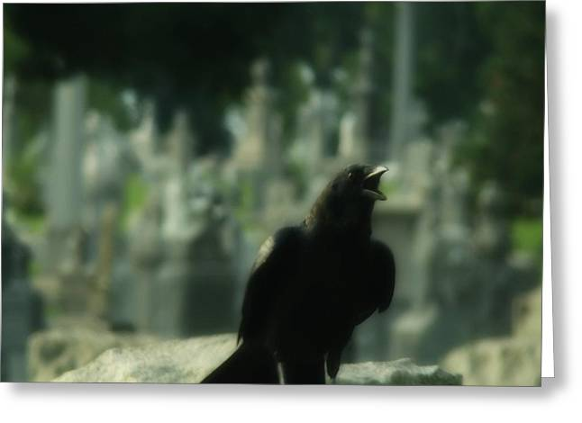 Crows On Tombstones Greeting Cards - Cemetery Corvidae Greeting Card by Gothicolors Donna Snyder
