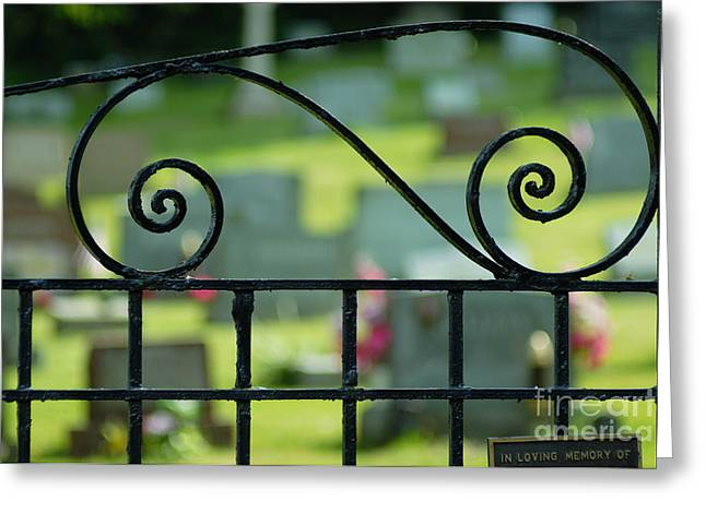Headstones Greeting Cards - Cemetery Gate Greeting Card by Amy Cicconi