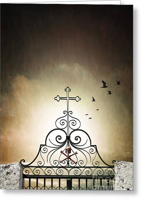 Doomed Greeting Cards - Cemetery Gate Greeting Card by Carlos Caetano
