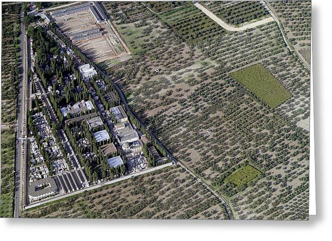 Agronomy Greeting Cards - Cemetery, San Severo Greeting Card by Blom ASA
