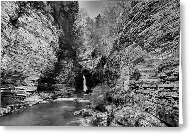 Schuyler County New York Greeting Cards - Central Cascade Black and White Greeting Card by Joshua House