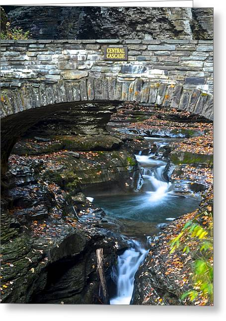 Eternal Flow Photographs Greeting Cards - Central Cascade Greeting Card by Frozen in Time Fine Art Photography