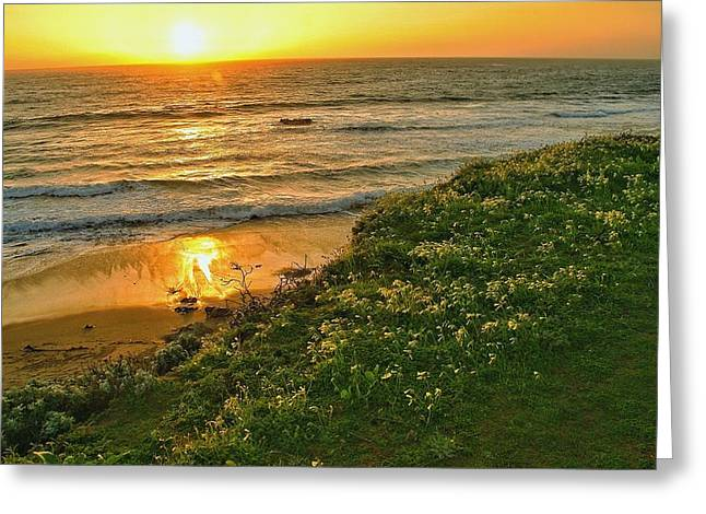 Big Sur Beach Greeting Cards - Central Coast Sunset Greeting Card by Steve Luther