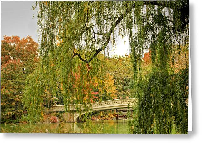 Rowing In Central Park Greeting Cards - Central Park 398 Greeting Card by Geraldine Scull