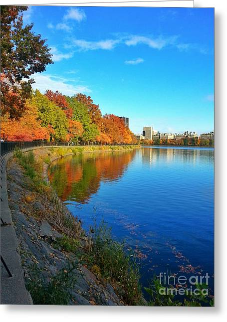Clique Greeting Cards - Central Park Autumn Landscape Greeting Card by Charlie Cliques