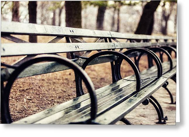 Central Park Bench Greeting Card by Lisa Russo