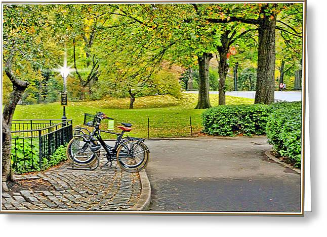 Fall Trees Greeting Cards - Central Park bike stand trail Greeting Card by Geraldine Scull
