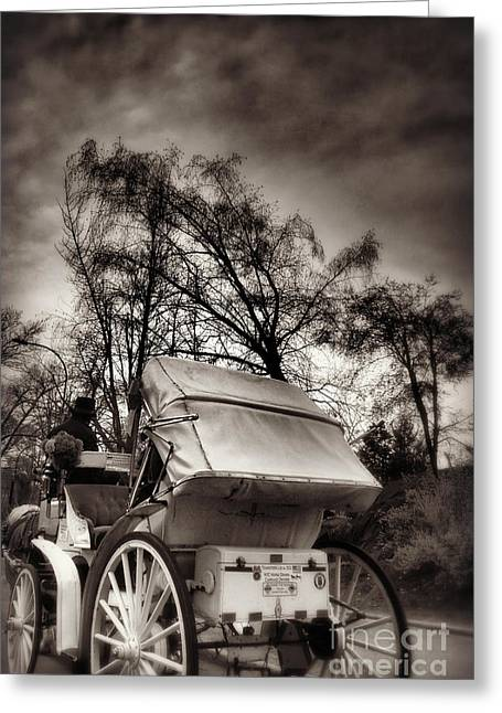 Horse And Buggy Greeting Cards - Central Park Carriage Ride 2 - Antique Appeal Greeting Card by Miriam Danar