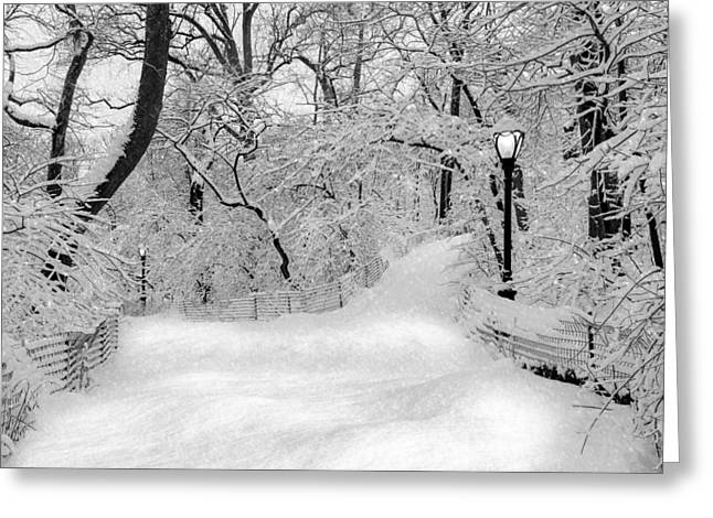 N.y. Greeting Cards - Central Park Dressed Up In White Greeting Card by Susan Candelario