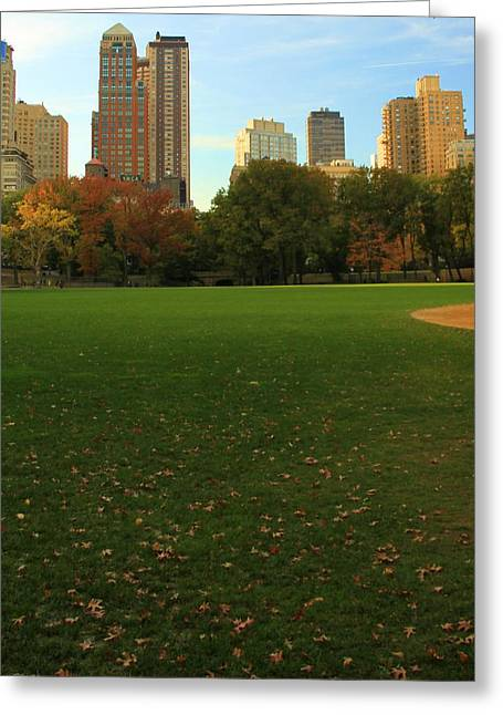 New Mind Greeting Cards - Central Park In Autumn Greeting Card by Dan Sproul