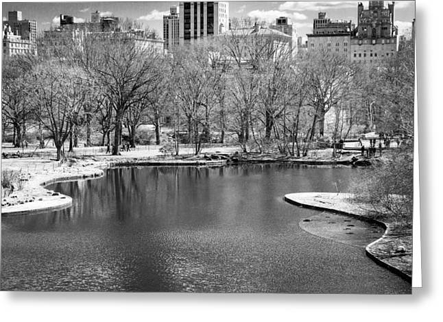 Central Park Photo Greeting Cards - Central Park in IR Greeting Card by Alexander Mendoza