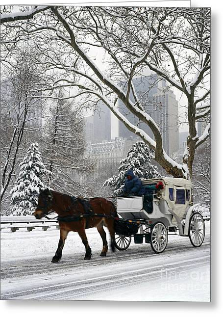 Hansom Cab Greeting Cards - Central Park In Snowfall Greeting Card by Rafael Macia