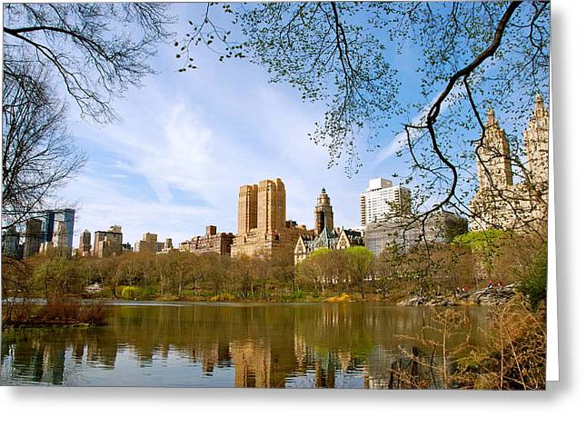 Nikon D80 Greeting Cards - Central Park in Spring Greeting Card by Eric Dewar