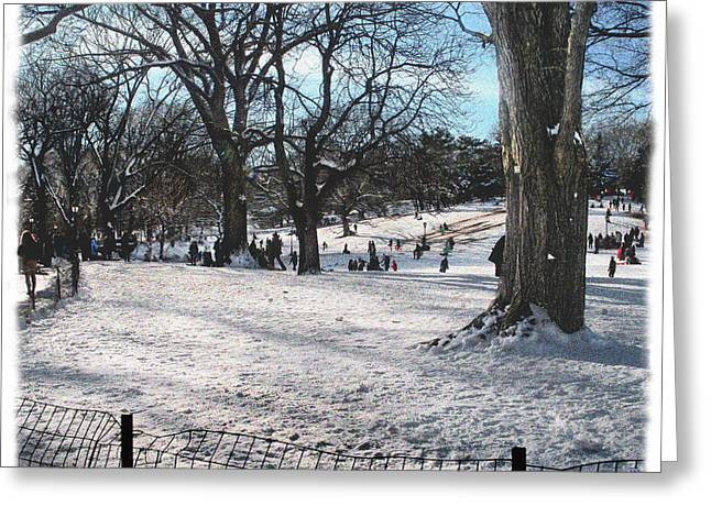 Crooked Fence Greeting Cards - Central Park in Winter 5 Greeting Card by Muriel Levison Goodwin