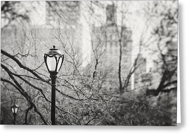 Urban Buildings Greeting Cards - Central Park Lamppost in New York City Greeting Card by Lisa Russo