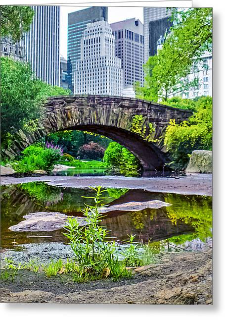 Clique Greeting Cards - Central Park Nature Oasis Greeting Card by Charlie Cliques