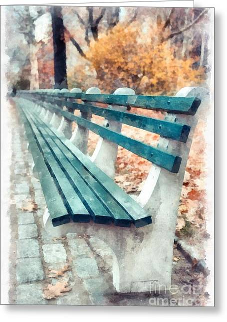 Sat Greeting Cards - Central Park NYC Greeting Card by Edward Fielding