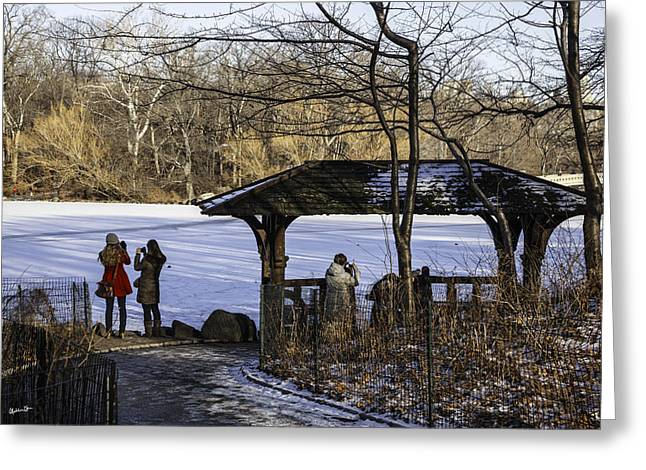 Snowy Day Photographs Greeting Cards - Central Park Photo Op 2 - NYC Greeting Card by Madeline Ellis