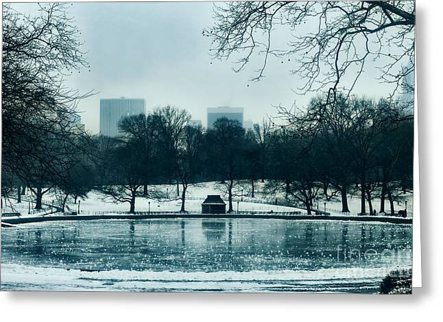 Grazing Snow Greeting Cards - Central Park Greeting Card by Rafael  Pacheco