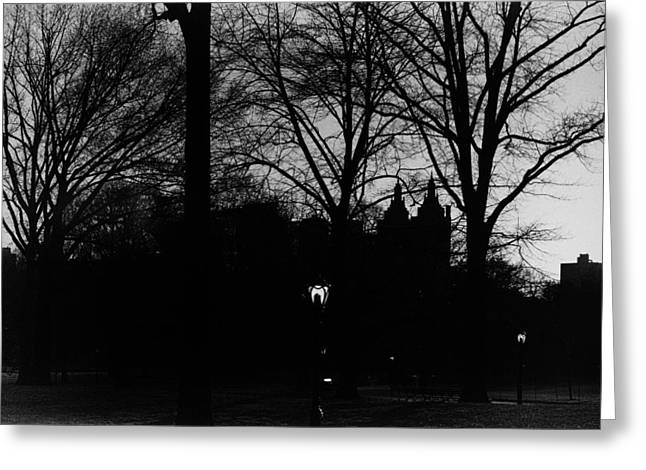 New York Evening Post Greeting Cards - Central Park silhouette in black and white Greeting Card by Marianne Campolongo