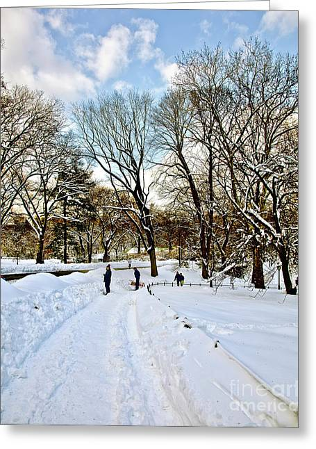Jogging Greeting Cards - Central Park Snow Storm one day later2 Greeting Card by Madeline Ellis