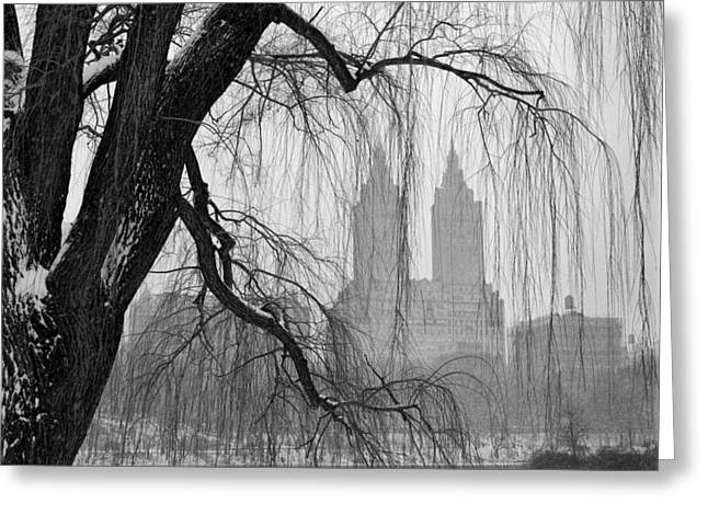 Union Terrace Greeting Cards - Central Park Study 6 Greeting Card by Randy Lemoine