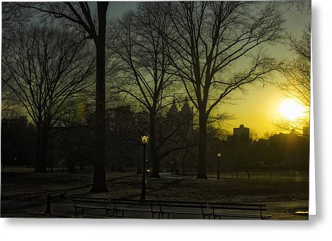 New York Evening Post Greeting Cards - Central Park sunset Greeting Card by Marianne Campolongo