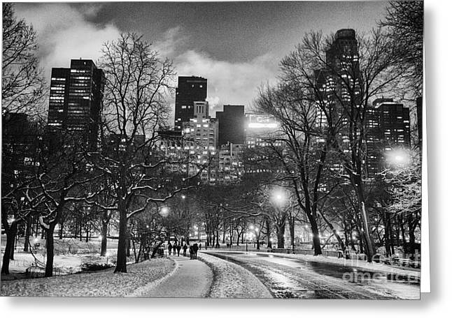 Central Park View Greeting Card by John Farnan