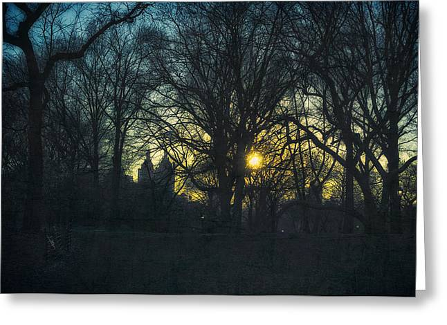 Bare Trees Mixed Media Greeting Cards - Central Park vintage sunset Greeting Card by Marianne Campolongo