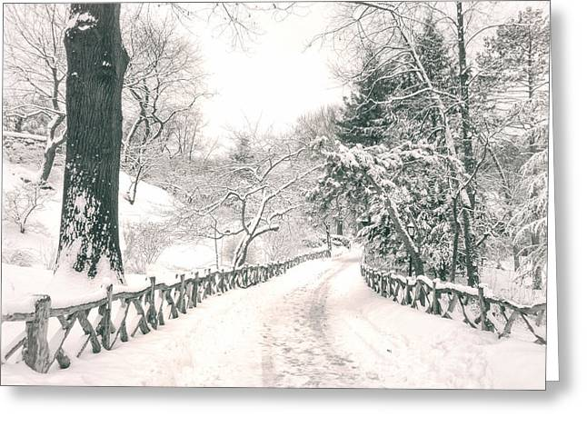 Blizzard New York Greeting Cards - Central Park Winter Landscape Greeting Card by Vivienne Gucwa