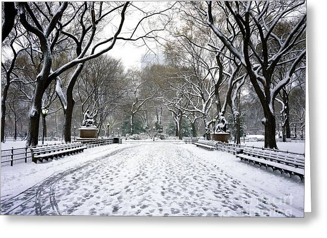 Tress Prints Greeting Cards - Central Park With Snow NYC Greeting Card by Rafael Macia