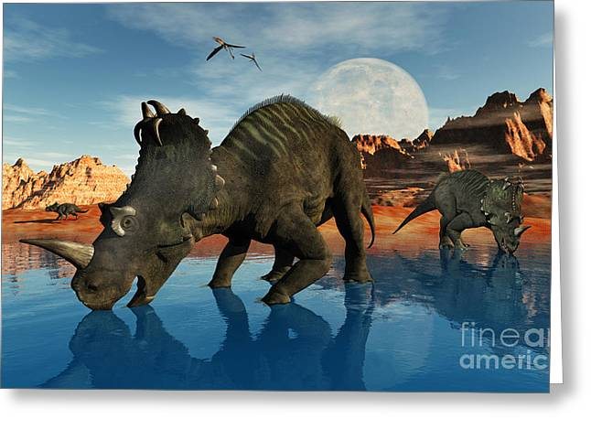 Reflections In River Digital Art Greeting Cards - Centrosaurus Dinosaurs Grazing Greeting Card by Mark Stevenson