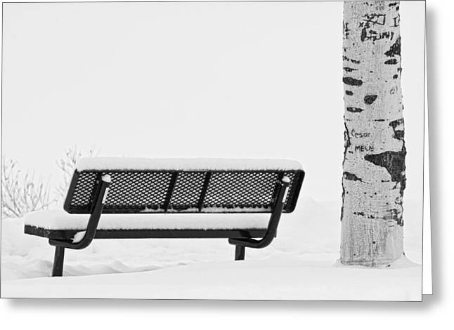 Park Benches Greeting Cards - Cesar Melai Love in The Snow BW Greeting Card by James BO  Insogna