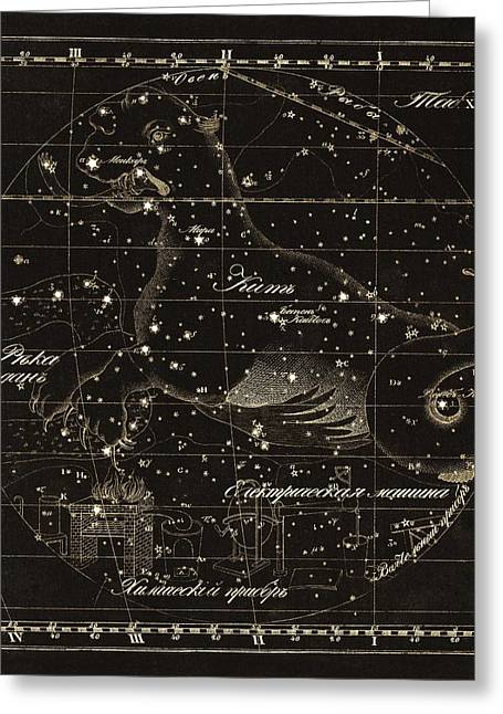 Punched Holes Greeting Cards - Cetus constellations, 1829 Greeting Card by Science Photo Library