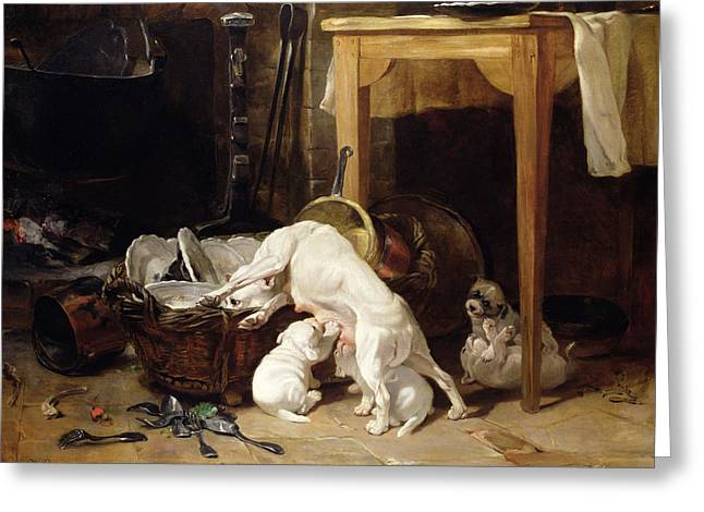 Cluttered Greeting Cards - Chacun Pour Soi, 1864 Greeting Card by Philippe Rousseau