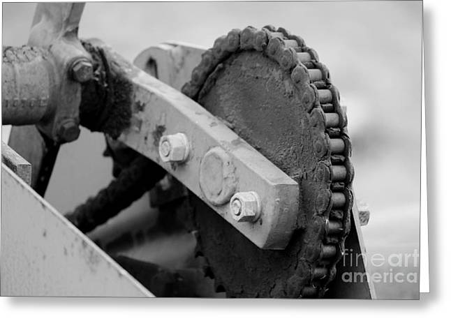 Mechanism Photographs Greeting Cards - Chain and Gear Greeting Card by Jackie Farnsworth