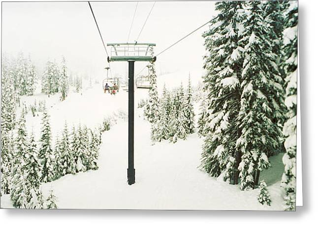 Ski Lift Greeting Cards - Chair Lift And Snowy Evergreen Trees Greeting Card by Panoramic Images
