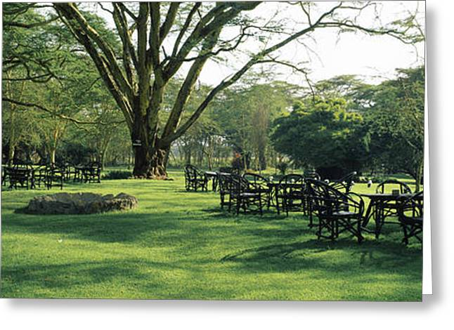 Lawn Chair Greeting Cards - Chairs And Tables In A Lawn, Lake Greeting Card by Panoramic Images