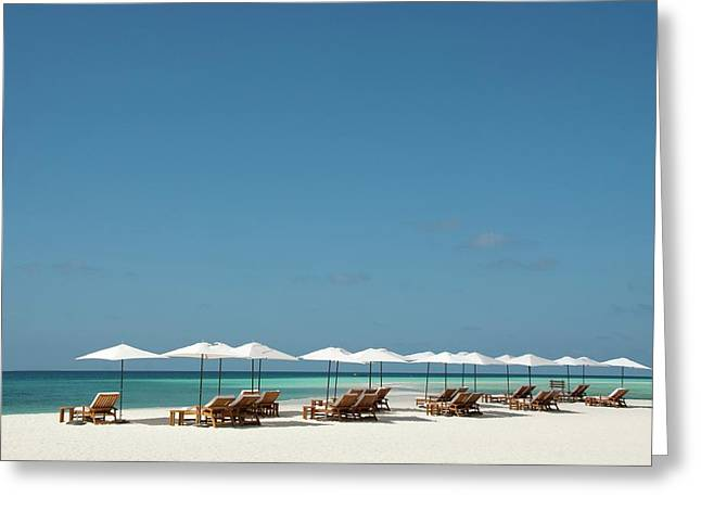 Chairs And Umbrellas On The Beach Greeting Card by Scubazoo