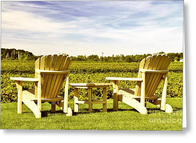 Table Wine Greeting Cards - Chairs overlooking vineyard Greeting Card by Elena Elisseeva